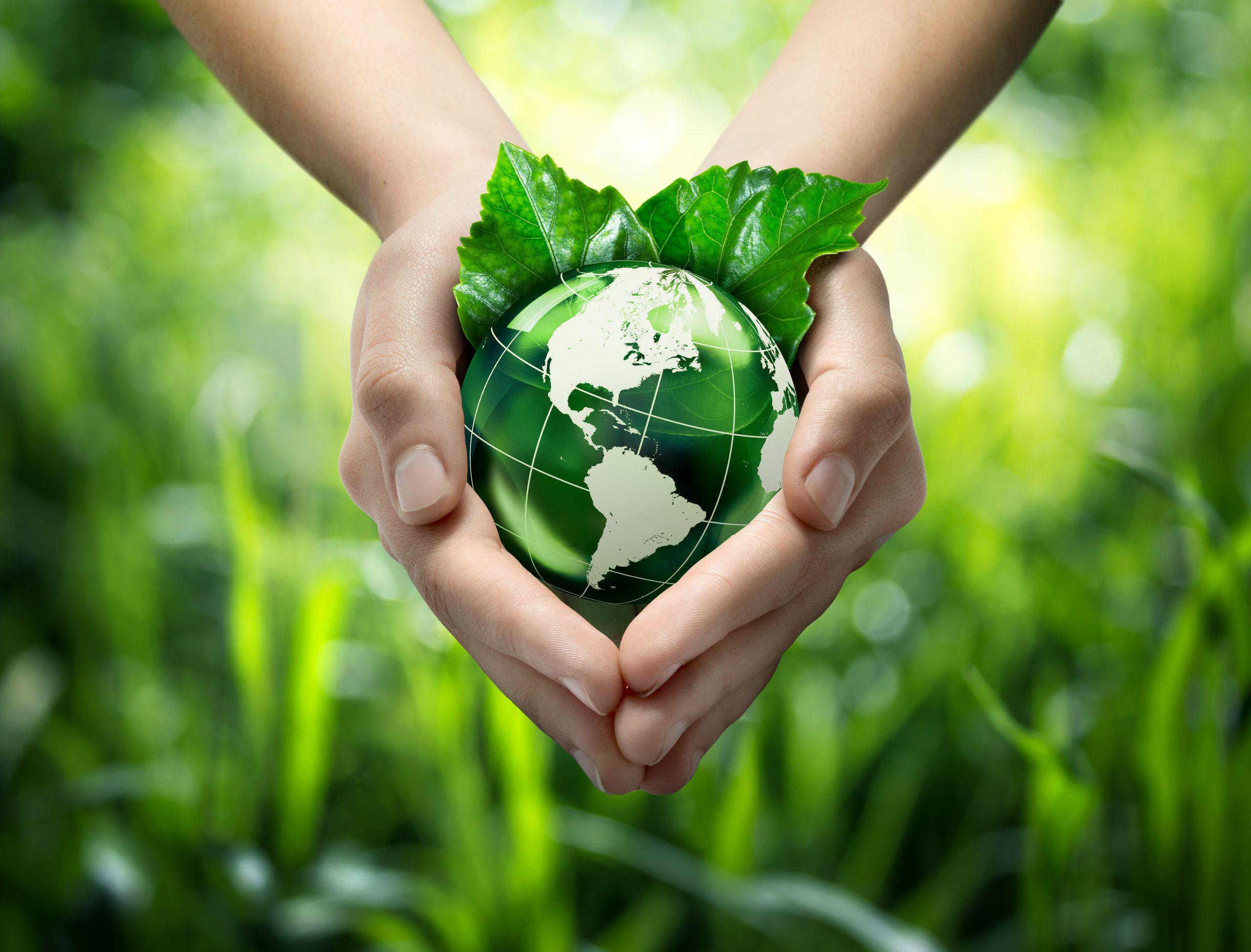 5) Heute und jetzt nachhaltiger leben! – ab 14:00 Uhr